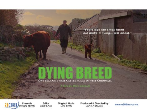 Mick Catmull - Dying Breed